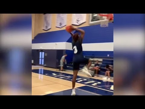 Bronny James and Zaire Wade Dunks Look Like LeBron and D  Wade!