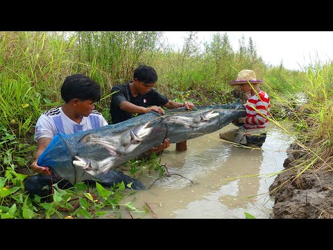Unique Fishing | Three Man Catching Fish By Hand And Net