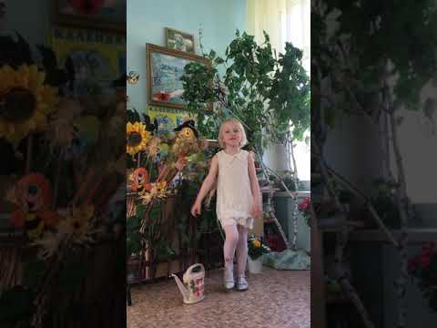 Изображение предпросмотра прочтения – АнтонинаЕгорова читает произведение «Чудеса» В.А.Степанова
