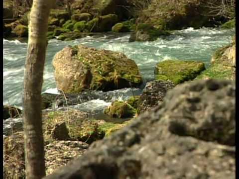 Springs in Missouri