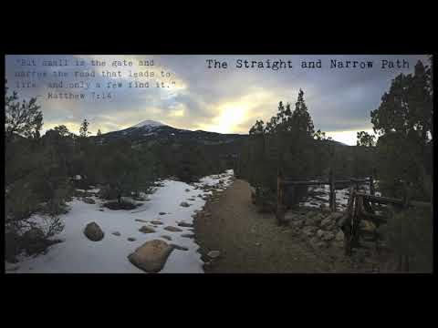 The Straight and Narrow Path : Mossart Music
