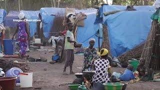 Mali, NOUVEAU MASSACRE DANS UN VILLAGE DOGON