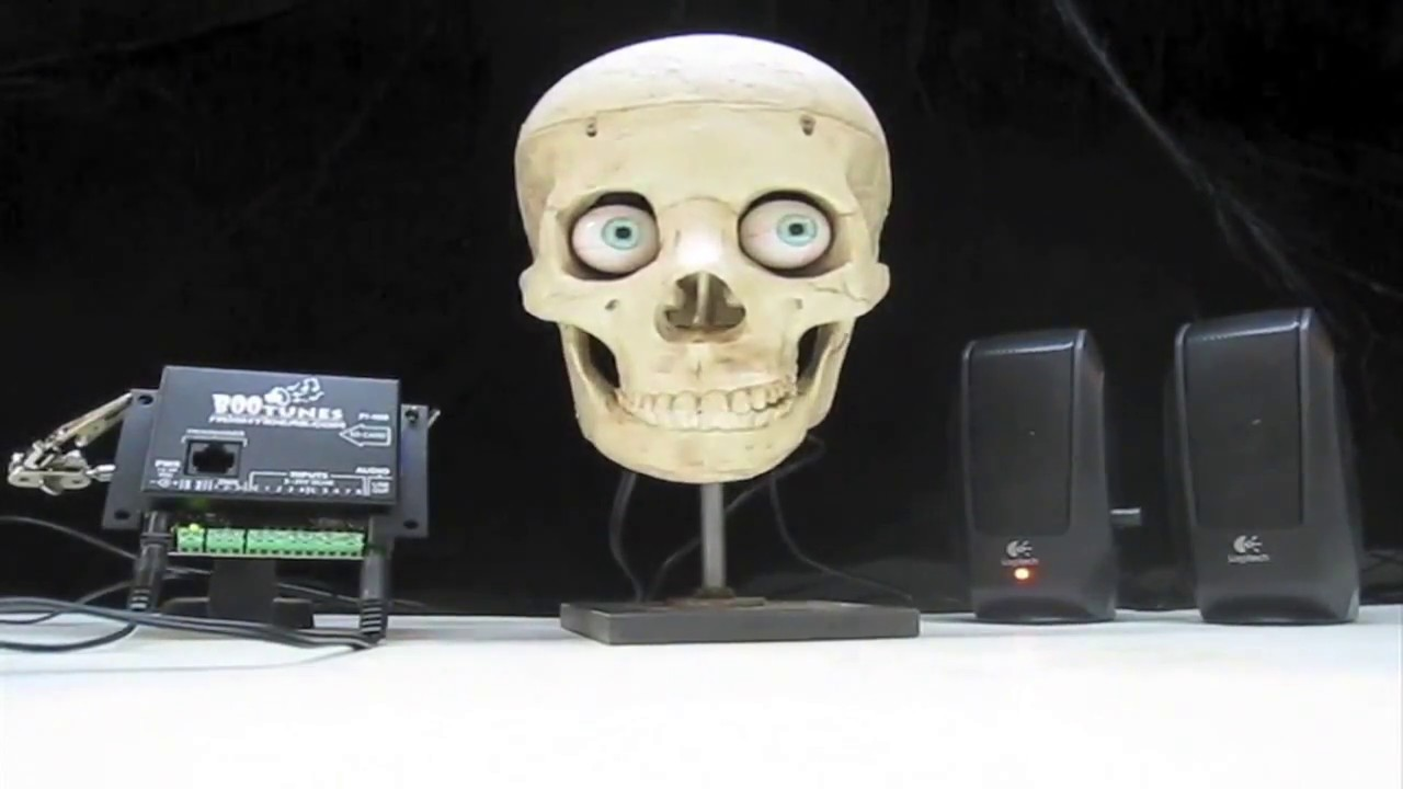 talking skulls sound activated halloween prop powered my picotalk - Talking Skull Halloween