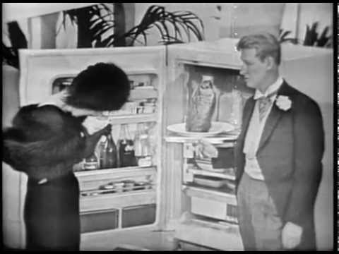 G  E  Refrigerators Commercial with Mike Nichols & Elaine May