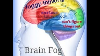 Brain Fog and Inflammation