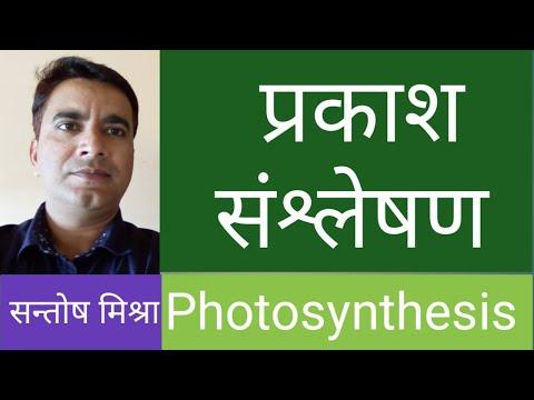 प्रकाश संश्लेषण - सरल विधि से || Photosynthesis - Easy Method ||