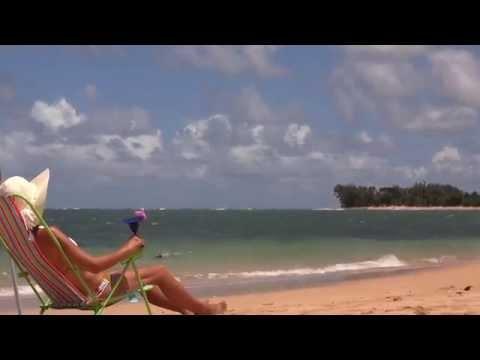 Yes, Hawaii   Hawaii Vacations from Hawaii Aloha Travel