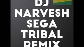 DjNarvesh-Sega Tribal Remix