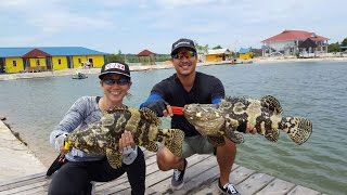 Video Day 2, Batam Barelang Fishing Pond, Aug 2016 download MP3, 3GP, MP4, WEBM, AVI, FLV Agustus 2018