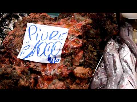 Santiago, Chile - Mercado Central (Famous Seafood Market) - January 24, 2009 - In HD