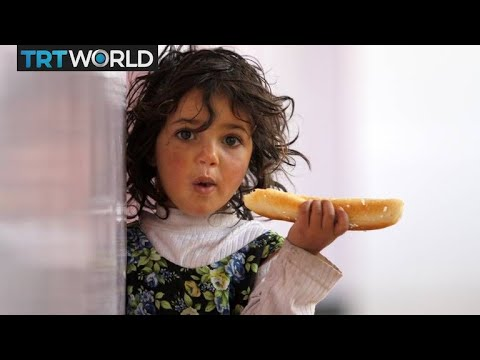The War in Yemen: UN delegation expected in port city of Hudaida