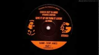DJ AYRES - GIVE IT UP OR TURN IT LOOSE