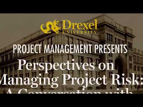 Perspectives on Managing Project Risk
