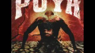 Watch Puya Fundamental video