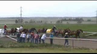 Chuckwagon and Chariot Racing