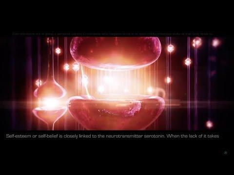 THE AWAKENING ...  Quantum Mechanics of the Human Brain %26 Consciousness.