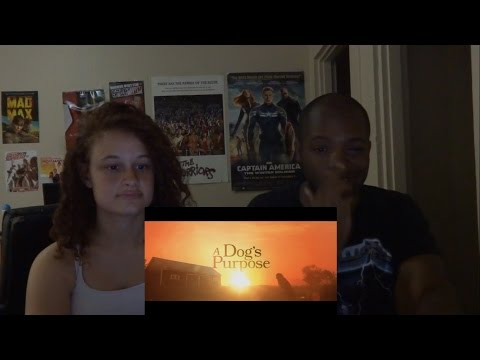 A Dog's Purpose   Official Trailer REACTION