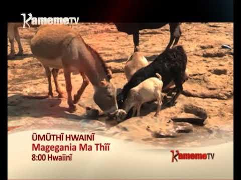 Magegania ma Thii na Kamau wa Mwangi Promo