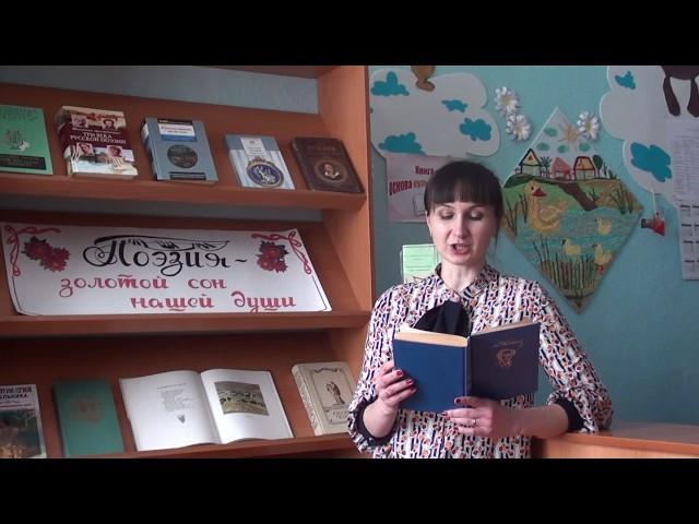 Изображение предпросмотра прочтения – ЕвгенияПащенко читает произведение «Летний вечер (Уж солнца раскалённый шар…)» Ф.И.Тютчева