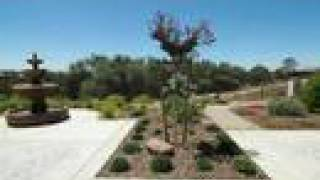LINCOLN CA VERDERA LUXURY REAL ESTATE HOME and HOMES -- Jane
