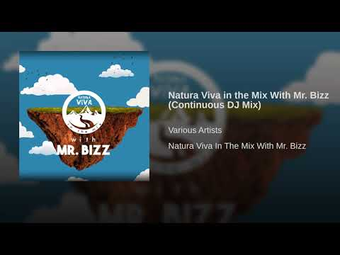 Natura Viva in the Mix With Mr. Bizz (Continuous DJ Mix)