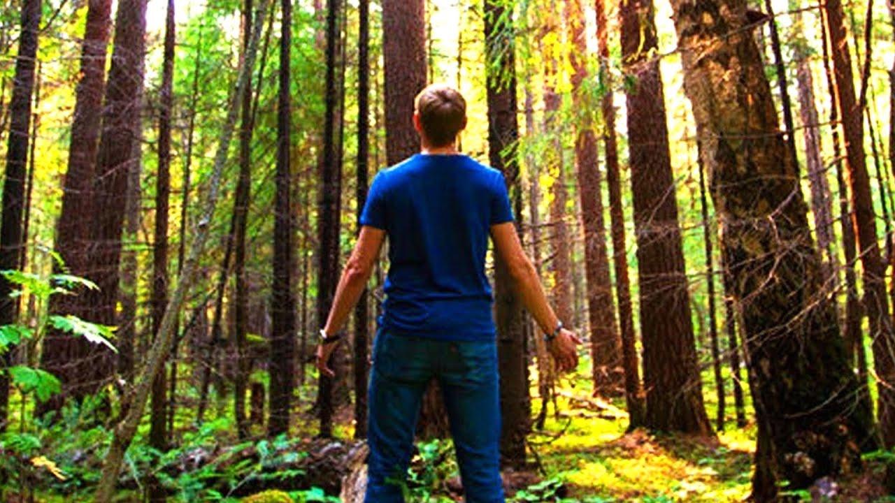 Картинки по запросу Муж раз в неделю уезжал в лес. Жена решила проследить. Потом долго не могла в себя прийти