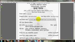 how to apply for birth registration online