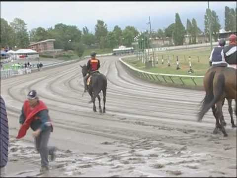 'Most Dangerous Job' in horse racing with amazing footage (outriders)