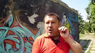 Как заработать на клубнике: опыт семьи из Украины