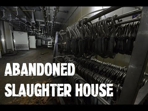 Abandoned Slaughter House / Abattoir Like something from a horror movie!