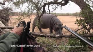 Razor Dobbs HIPPO 10mm auto close encounter stand-off. Handgun Hunting