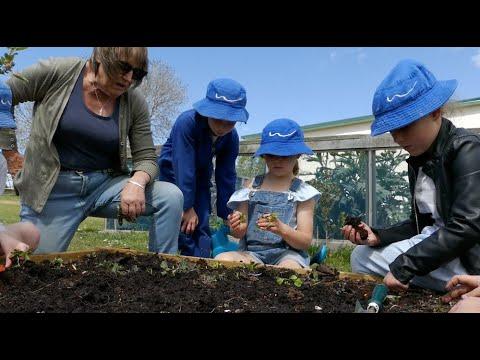 Weston School Gets Growing
