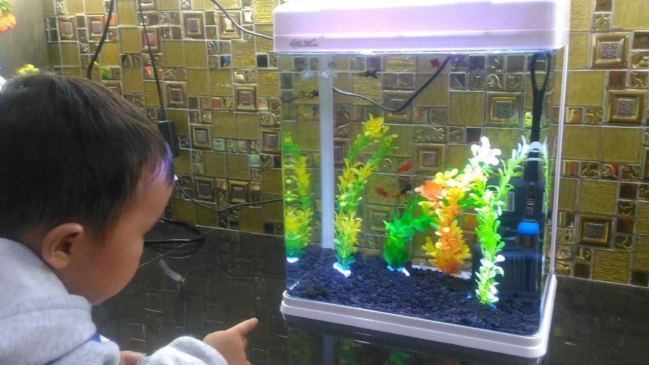 Aquarium Mini Cantik Merk Xilong