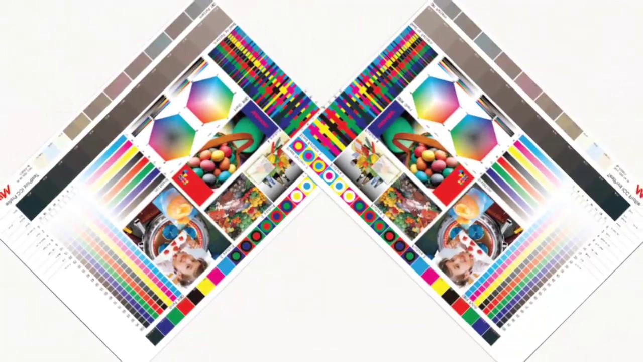 Mimaki Core Technology: Mimaki Target Color Emulator
