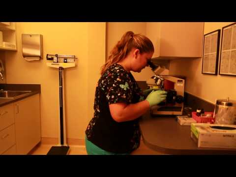 Well Woman Appointments Cedar River Clinics Renton