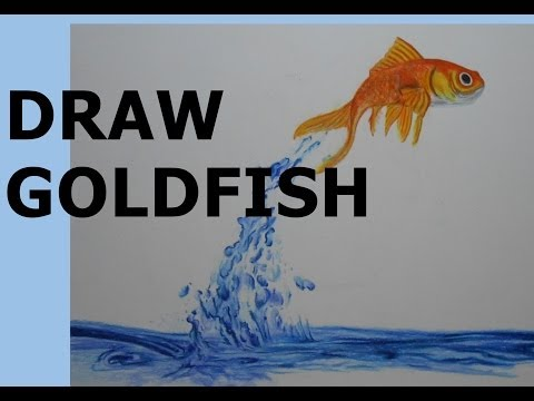 how-to-draw-a-goldfish---time-lapse-art-drawing