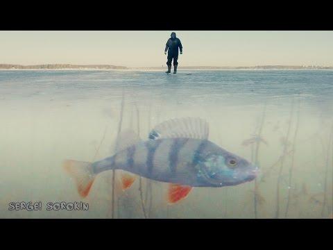 зимняя рыбалка видео онлайн