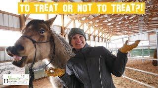 To Treat Or Not To Treat 🍎🥕 // Versatile Horsemanship