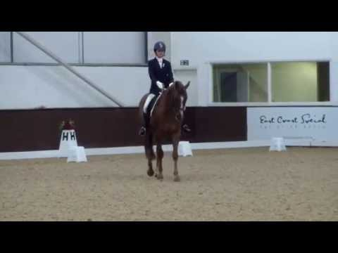 BD Elementary freestyle - Dressage to music