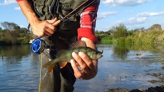 Ловля нахлыстом на мокрые мушки и нимфы (Wet Flies Fly Fishing)