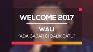 Video Wali - Ada Gajah di Balik Batu (Welcome 2017) download MP3, 3GP, MP4, WEBM, AVI, FLV November 2017