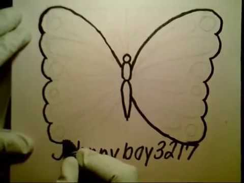 Butterfly Drawings For Beginners