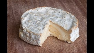 best cheese reviews