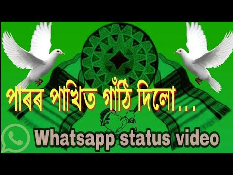 Paror pakhit gathi dilu.... Whatsapp / facebook status video