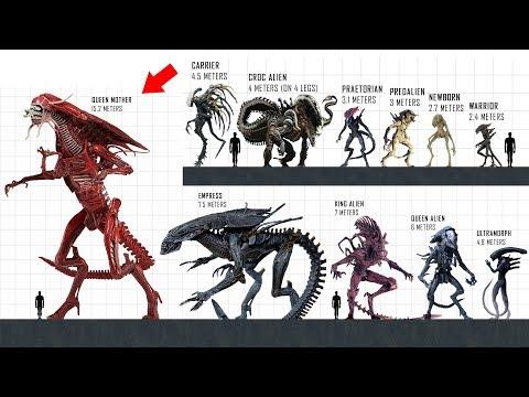 XENOMORPH Size Comparison
