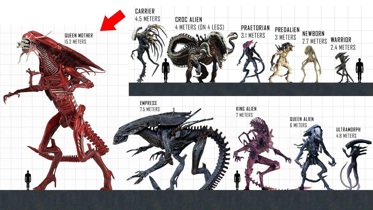 Download XENOMORPH Size Comparison
