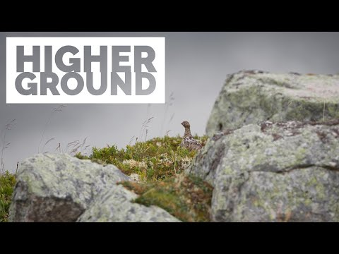 landscape-wildlife-photography-|-on-higher-ground---sigma-70-200mm-sport