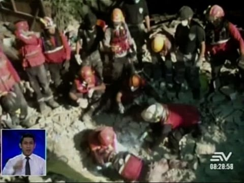 Raw: Live Duck Pulled From Ecuador Quake Rubble