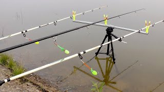Легкая осенняя рыбалка на КОРМАКИ(Пружины).На диком водоеме.И такие рыбалки бывают