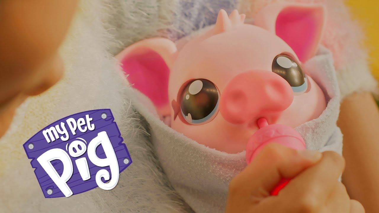 Little Live Pets | My Pet Pig | TVC 30